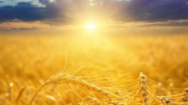 Cuatro aspectos importantes sobre la bendición