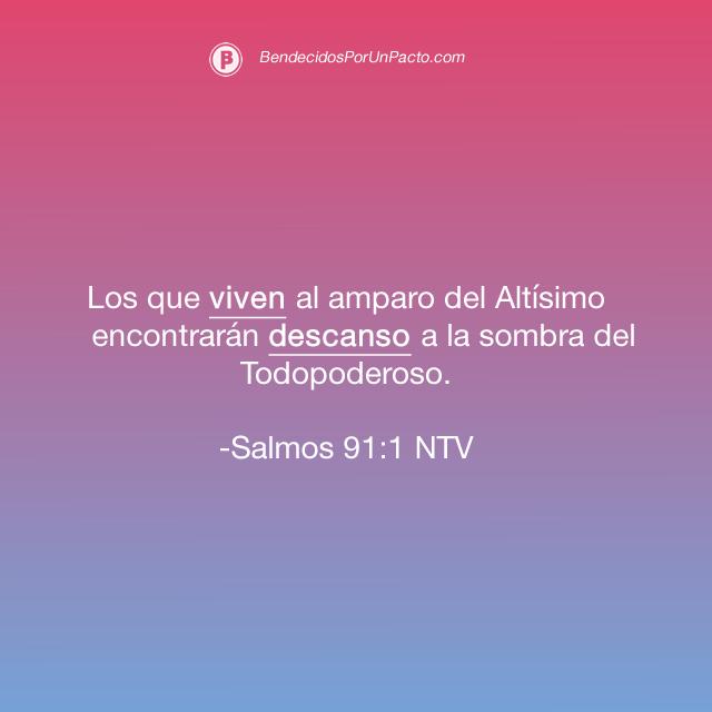 salmo 91:1 Los que viven al amparo del Altísimo encontrarán descanso a la sombra del Todopoderoso.